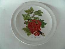Pomona Portmeirion lautanen 18,7 cm Punaherukka