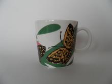 Nooa Butterflies WWF Arabia