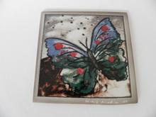 Butterfly Heljä Liukko-Sundström