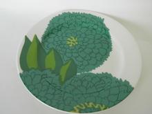 Primavera Plate green Iittala