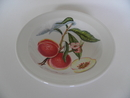 Pomona Portmeirion Deep Plate small Peach