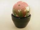 Flower Pot Pink Saintpaulia