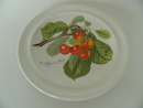 Pomona Portmeirion lautanen 18,8 cm Vaalea kirsikka