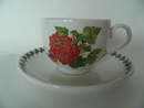 Pomona Portmeirion Tea Cup and Saucer Red Currant