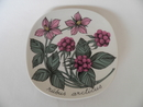 Rubus arcticus Wall Plate Esteri Tomula SOLD OUT