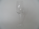 Aurora Wine Tasting White Wine Glass