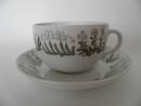 Polaris Tea cup and Saucer Arabia