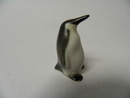Pingviini pieni Arabia