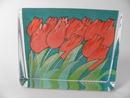 Lasikortti Tulppaanit HLS