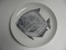 Kala -lautanen Anja Juurikkala