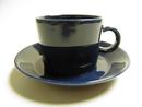 Teema Tea Cup And Saucer Arabia