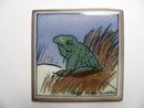 Frog Helja Liukko-Sundstrom