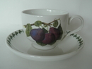 Pomona Portmeirion Tea Cup and Saucer Plum